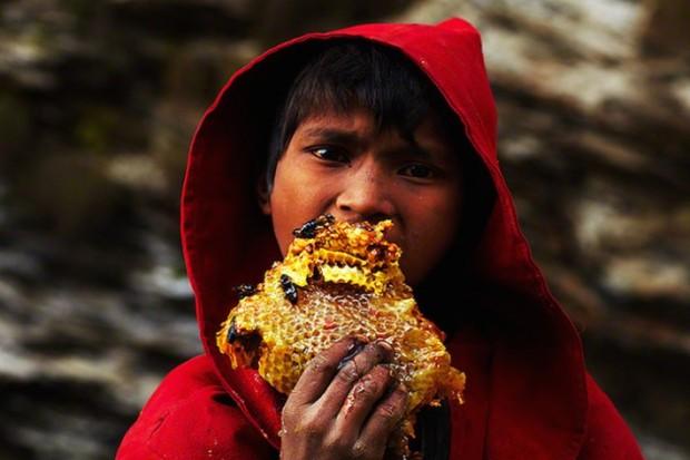 fotos de cazadores de miel nepal