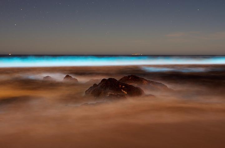 fotos boluminescentes
