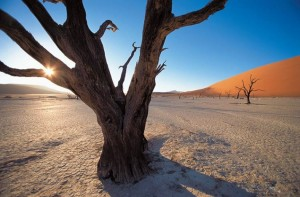 Foto tomada por Michael Martin en Namibia