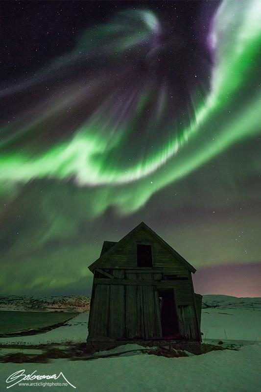 aurora12