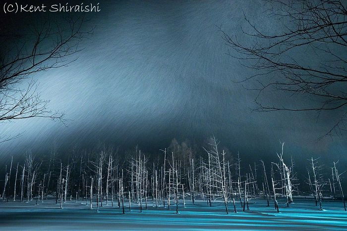 Light-Up-SnowyPond-FB-1620px__700