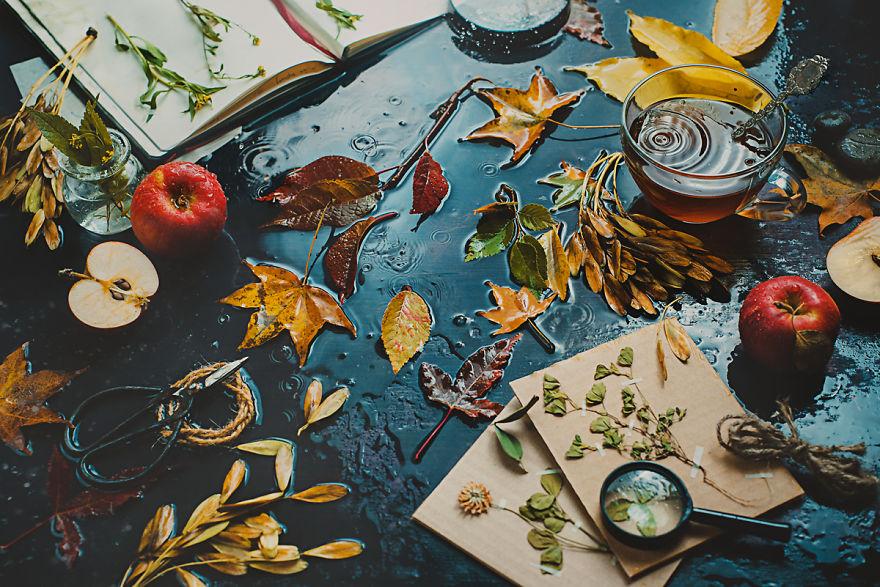 Autumn-inside-sml__880