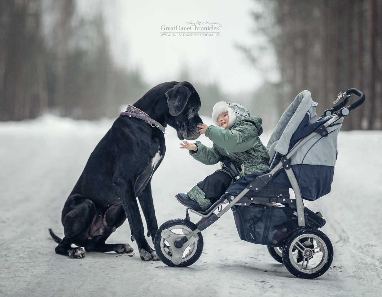 kids-and-big-dogs-15
