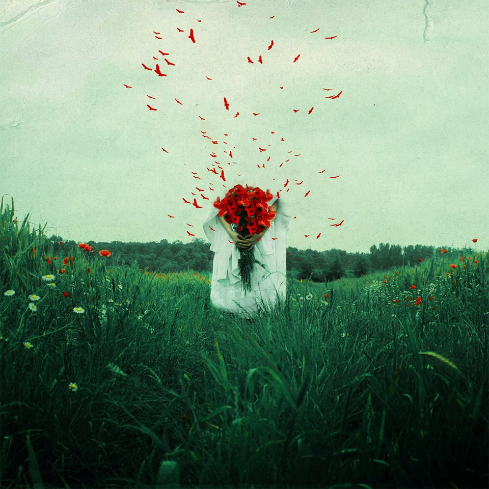 raluca caragea flowers