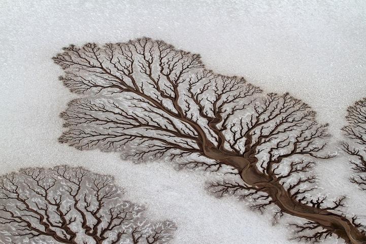foto concurso national geographic