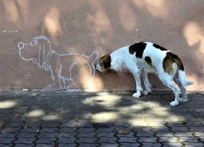 Perro olisqueando perro pintado en pared