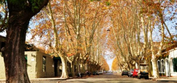 Calles en otoño