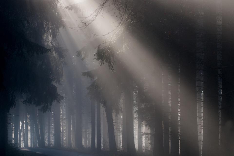 fotografía creativa aprovechando la luz