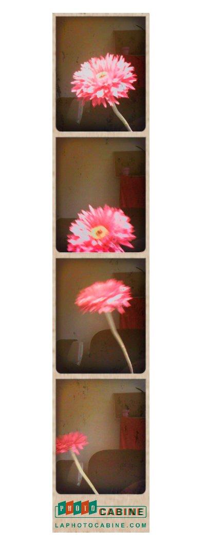Photocabine, fotos con tu webcam