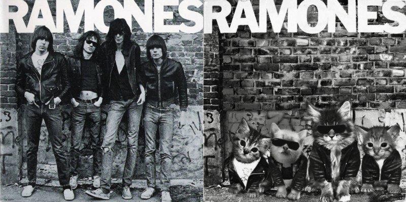 Ramones cat cover