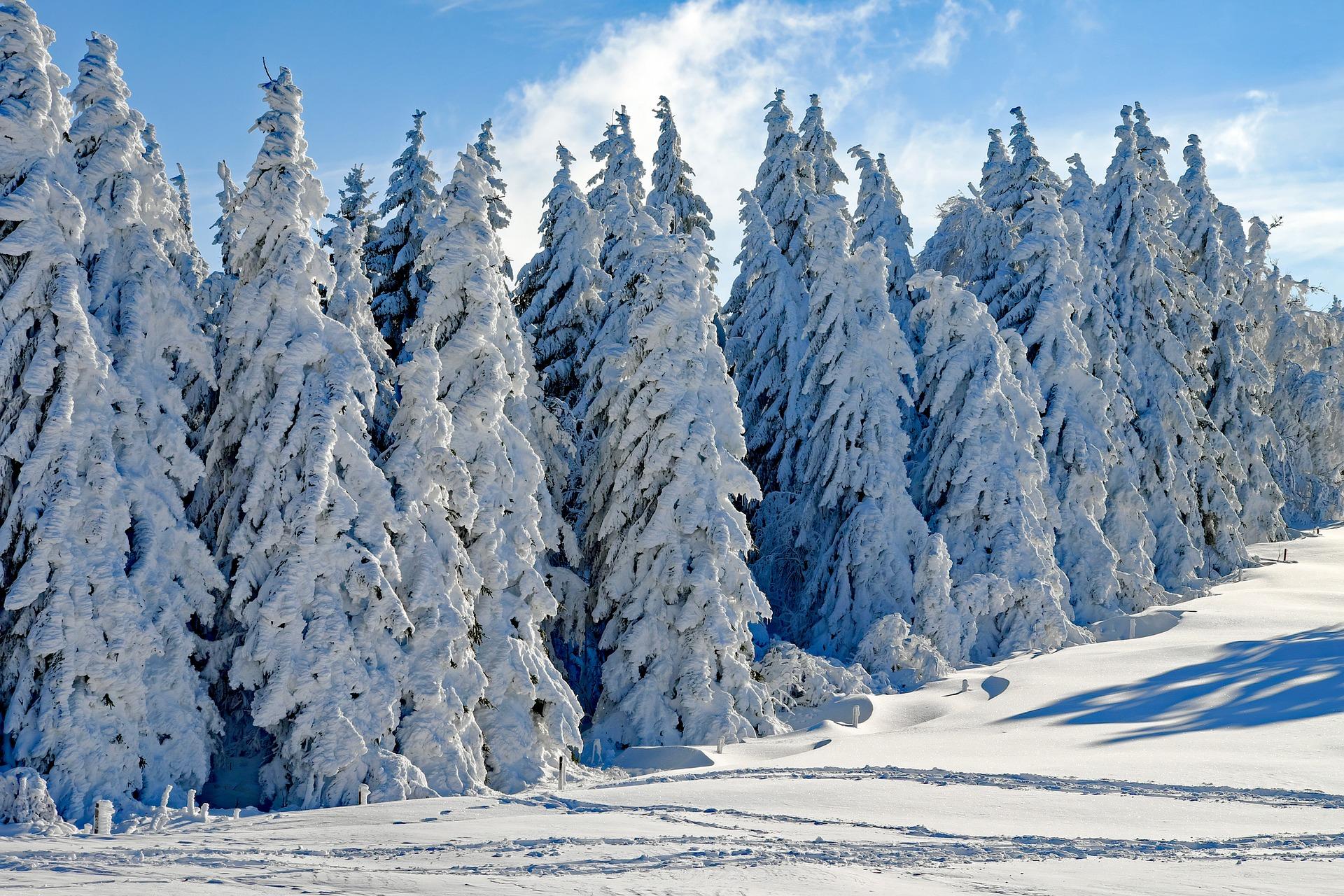 Paisajes de invierno. Sobreexposición