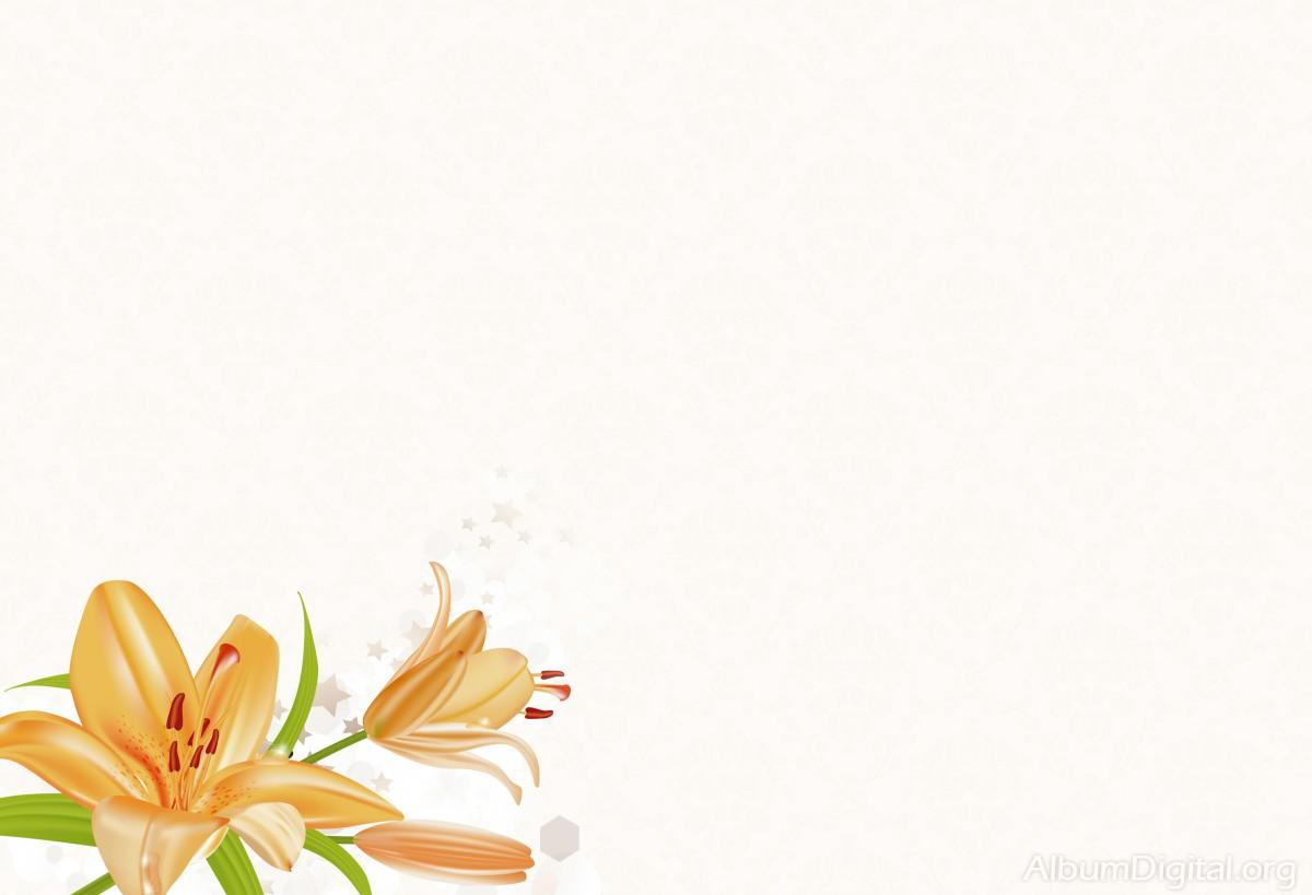 Fondo Primavera álbum Classic Flor Y Estrellas