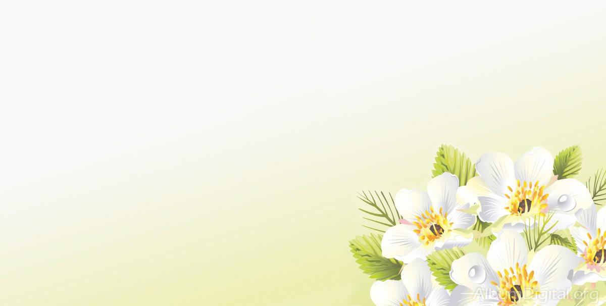 Fondo Primavera álbum Classic Flores Violetas: Fondo Primavera álbum Classic Rama Flores Blancas Y Gotas