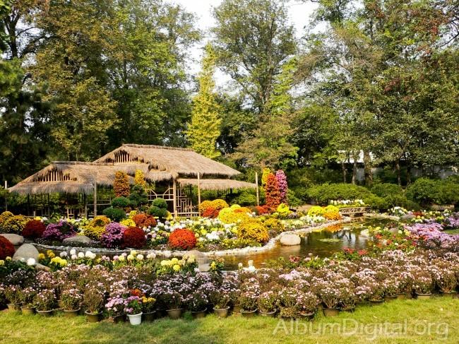 flores jardins fotos : flores jardins fotos:Foto Jardin con flores