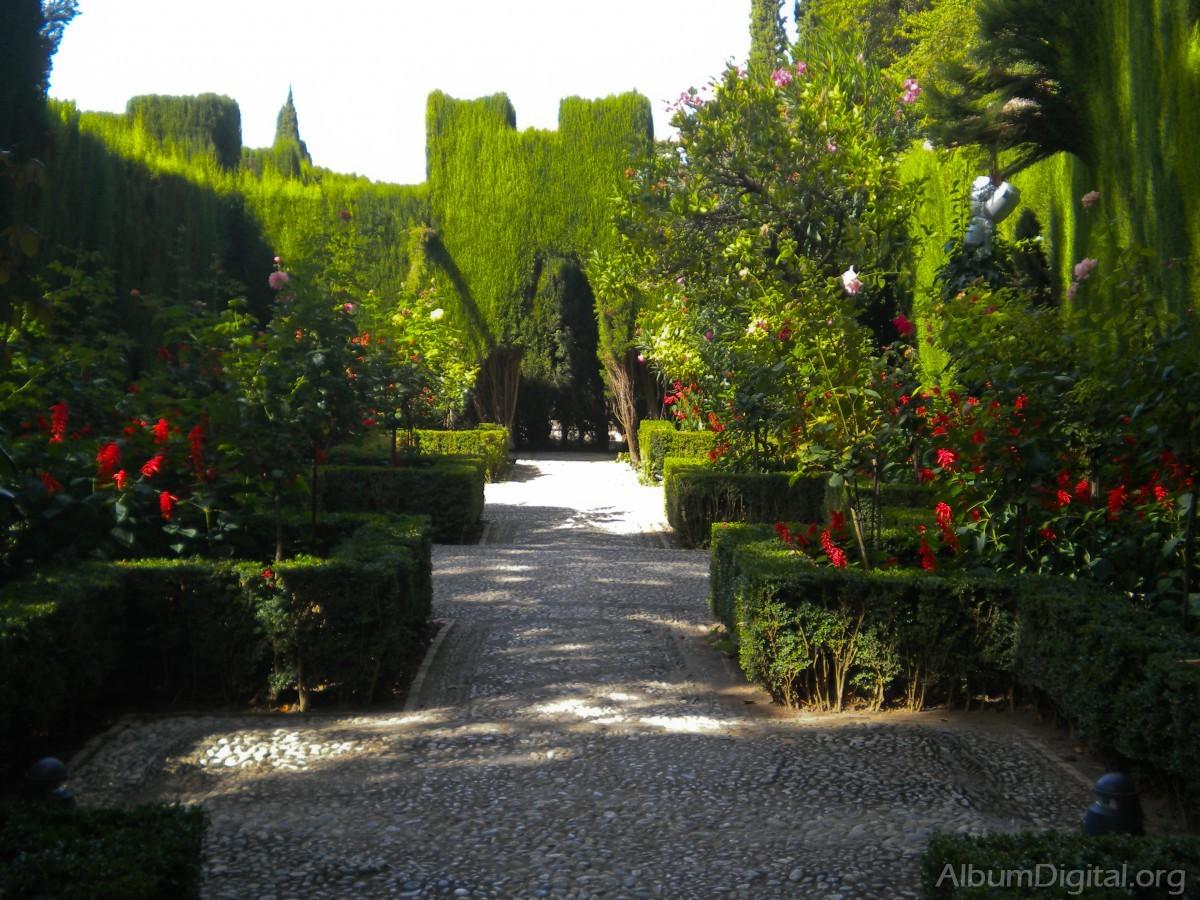 Jardin de los cipreses for Jardin cipres