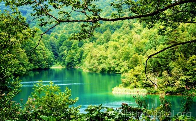 Lago Ciginovac