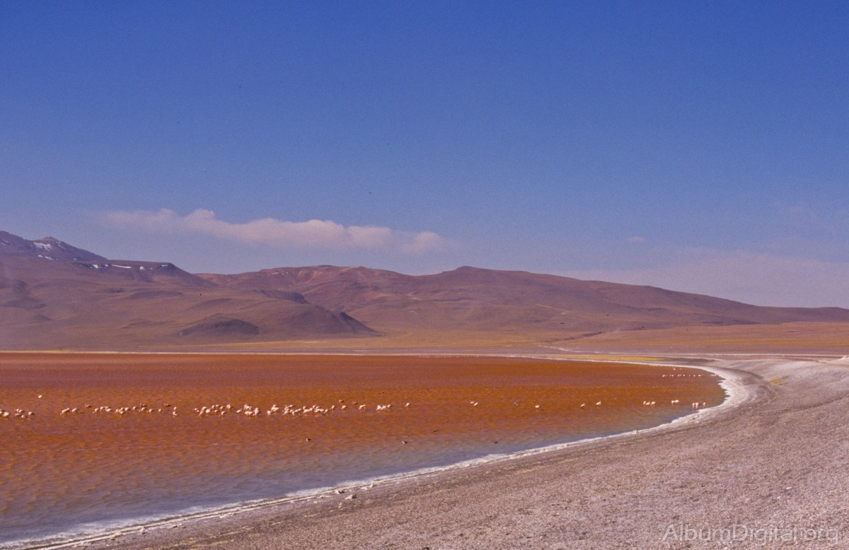 The southern Altiplano  Rough Guides  Rough Guides