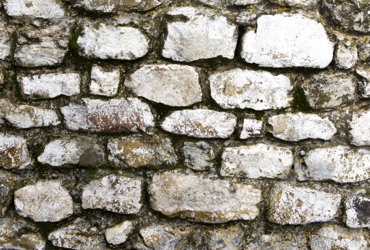 pared de piedra - Pared Piedra