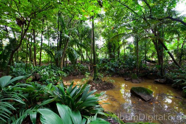 Jardin botanico for Jardin botanico contacto